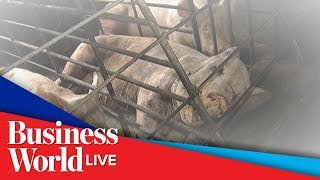 Animal checkpoints set up in Rizal over mysterious hog deaths