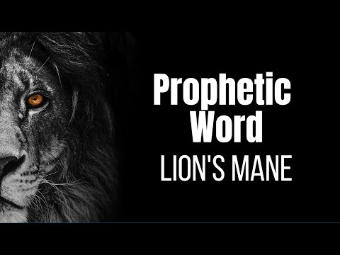 Prophetic Vision/Word Lion Shaking His Mane!!!