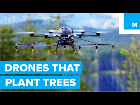 How Drones are Helping to Plant Trees - A Cleaner Future - UCL8Nxsa1LB9DrMTHtt3IKiw