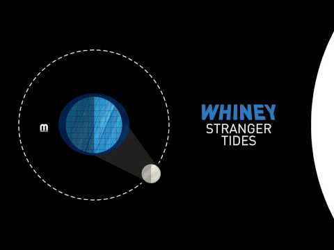 Whiney  - Moondance - UCNyo1qwT4ZKuoWsyrrdoc6g