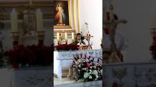 Parola Católica de hoy con Padre Carlos Rosell de Almeida #BREAKING #Navarra #ESPAÑA #Lima #PERU