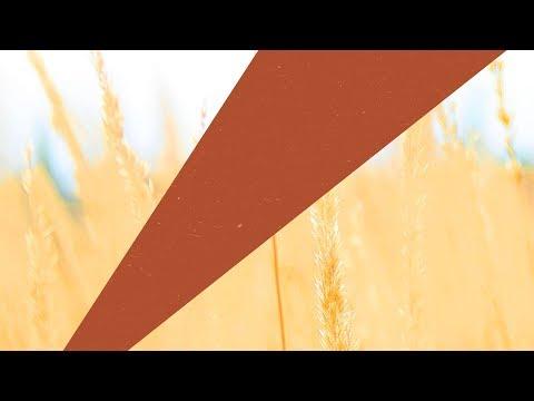 Jo. Cohen feat. Becca Krueger - Don't Look Back - UCGZXYc32ri4D0gSLPf2pZXQ