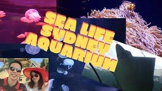 Sealife Sydney Australia | Sydney Aquarium