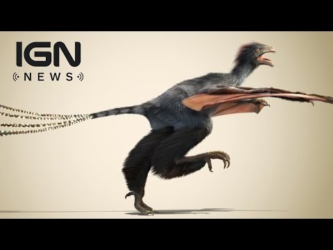 New Batwing Dinosaur Discovered - IGN News - ignentertainment