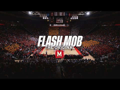 Maryland Students Flash Mob I (2013) - UCrXnNQU0iEMJQ2j4AWhdvCA