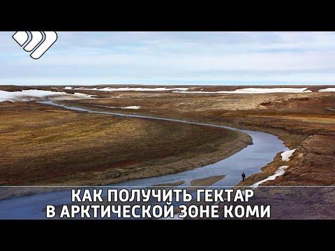 Через 4 дня стартует выдача бесплатных участков в арктической зоне Коми