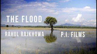 Rahul Rajkhowa - The Flood - rajkhowarahul , Carnatic