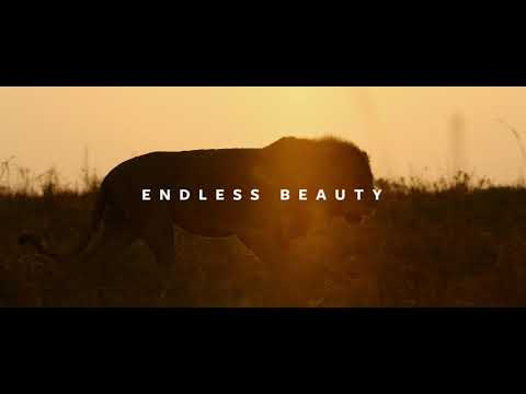 Endless Beauty by Chris Schmid - a Sony α7S III short movie