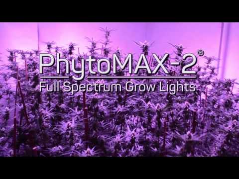 Announcing PhytoMAX-2 - The Best Just Got Better!