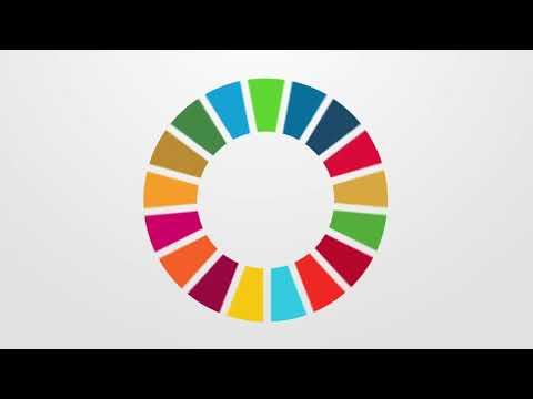SALTO contributing to the SDGs - Sustainable Development Goals