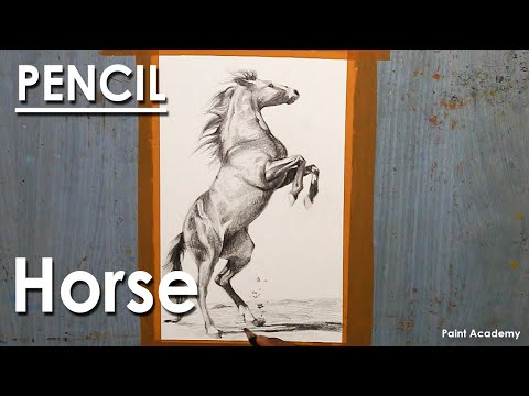 How to Shade A Horse Figure : Pencil Shading Techniques