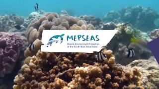 Teaser on the Second High Level Regional Meeting of the MEPSEAS Project
