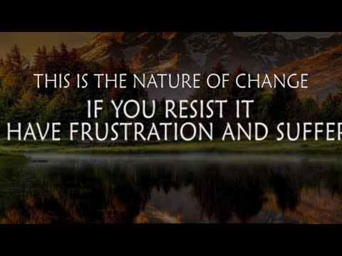 Relaxing Nature and Wild Life 2019 -The Survival Channel
