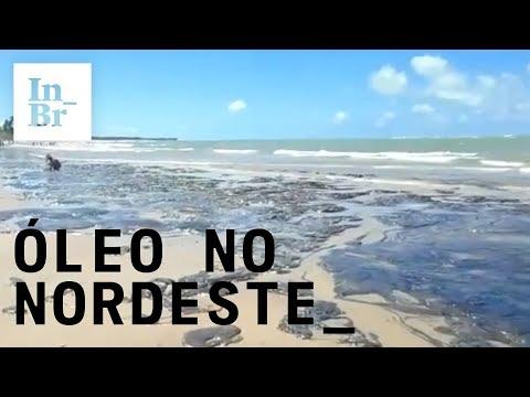 #OleoNoNordeste: vazamento de óleo no Nordeste completa 2 meses