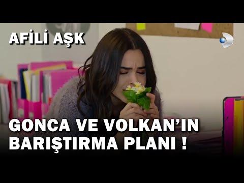 Gonca Ve Volkan'ın Barıştırma Planı! - Afili Aşk 30.Bölüm