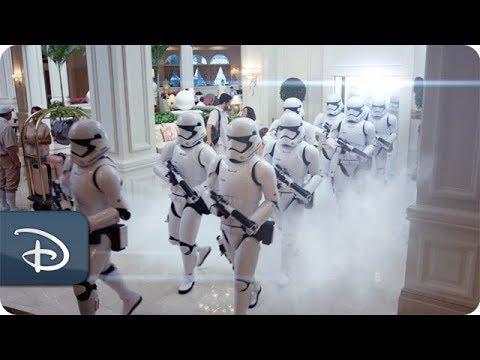 Magic All Around - Sun & Fun Room Offer   Walt Disney World Resort - UC1xwwLwm6WSMbUn_Tp597hQ