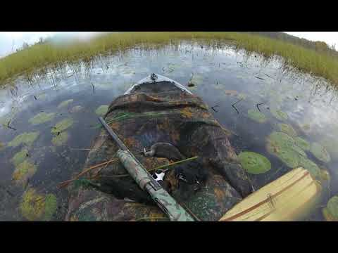 DUCK CAMP 2020. Zachary's Duck Hunting Kayak. Two mornings in the duck blind.