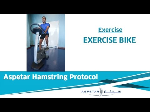 19. Exercises - Stationary Exercise Bike