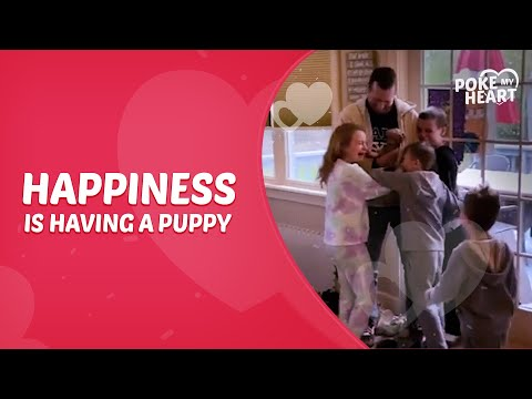 Kids Give Heartwarming Reaction to Their Parents Surprising Them With Puppy During Quarantine