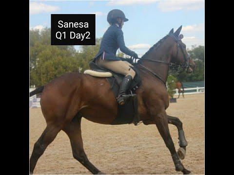 Sanesa Q1 Day 2