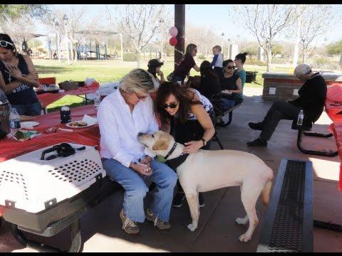 Caregiver Appreciation Day Video 3/2/17
