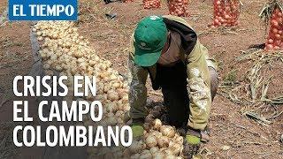 Las cifras que demuestran la crisis por la que pasa el campo colombiano I EL TIEMPO