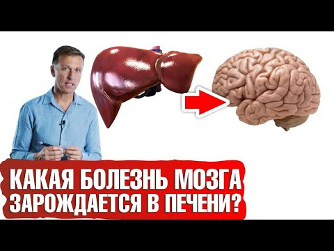 Береги печень, чтобы не заработать болезнь Альцгеймера photo