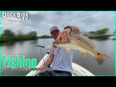 DockSide TV 'Fishing Flukes and Swimming Shads'