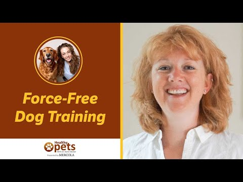Niki Tudge Explains Force-Free Dog Training