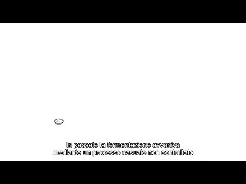 Story of good bacteria_3 with Italian subtitles.avi