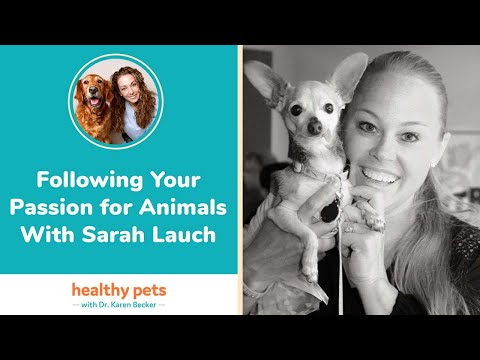 Following Your Passion for Animals With Sarah Lauch