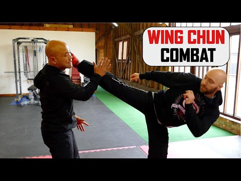 How to use Wing Chun in Combat Defend kick | Master Wong