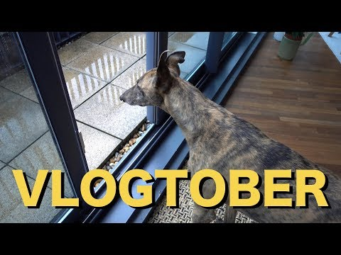 NEW IN HOME THINGS | VLOGTOBER 14