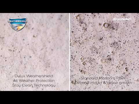 Dulux Weathershield All Weather Protection- Gives cleaner walls for longer