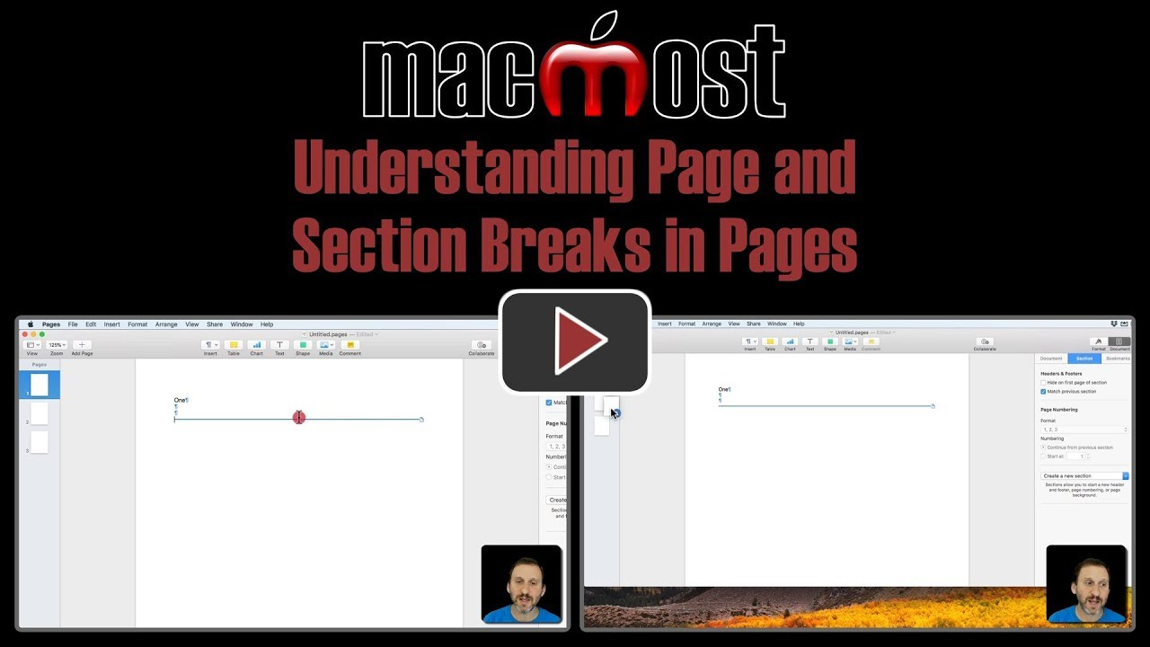 how to remove section break word mac