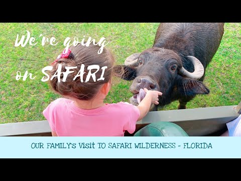 We're Going on Safari at SAFARI WILDERNESS RANCH! - Central Florida - LakeLand FL