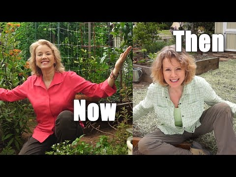 From the Origin to Now | Retrospective of the Late Bloomer Urban Garden | Los Angeles
