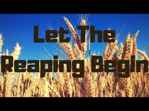 Let The Reaping Begin ~ From Gleaning To Owning