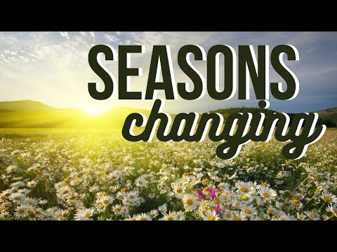 Seasons Changing  Joe Joe Dawson