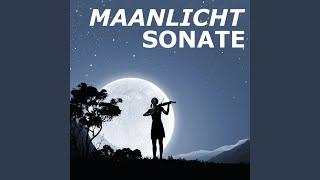 Maanlichtsonate (Pianosonate nr. 14) (marimba)