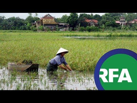 Việt Nam muốn vào top 15 nước nông nghiệp phát triển trong vòng 10 năm tới