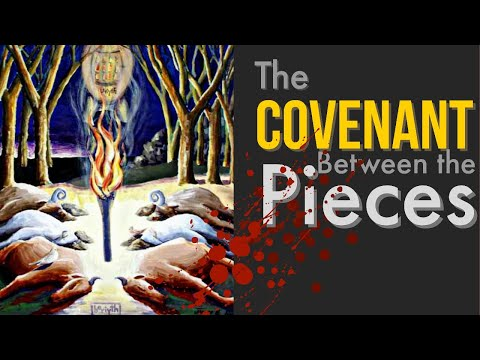 The Covenant Between The Pieces  John Mark Bartlett