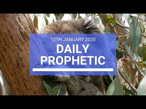 Daily Prophetic 12 January 2 of 4