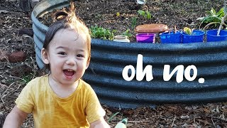 3 minutes of my toddler pranking me...