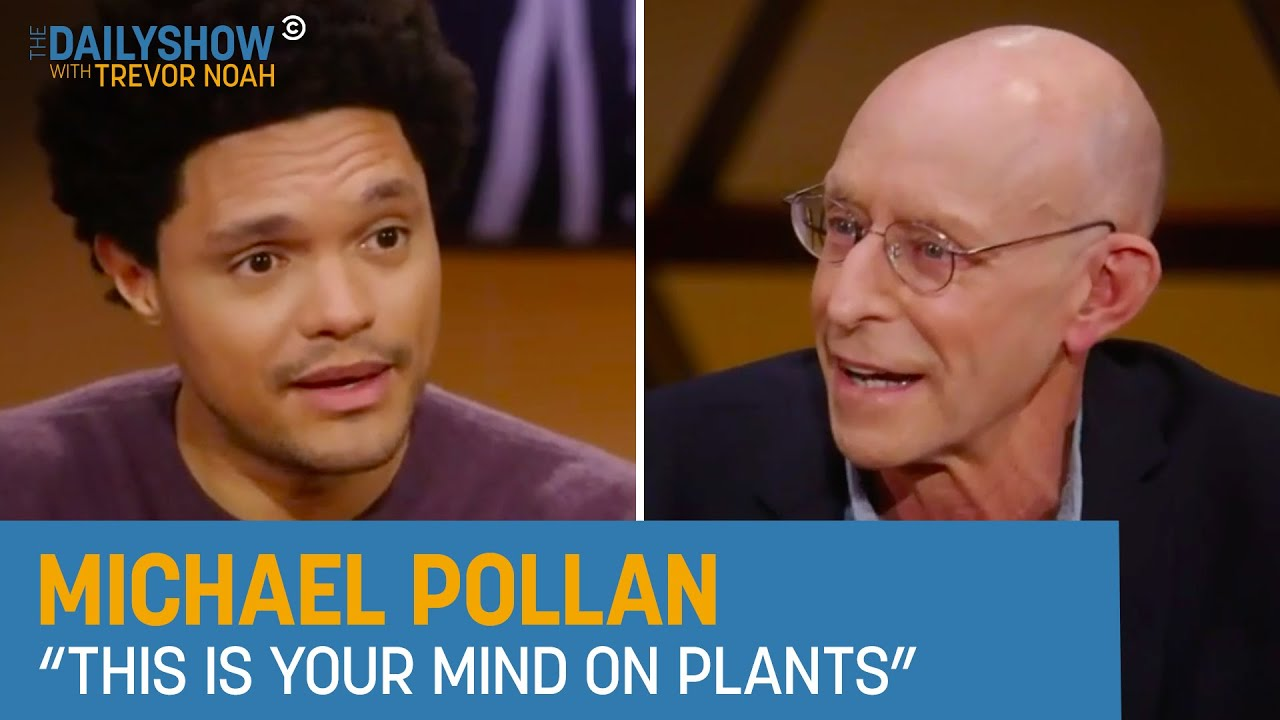 Michael Pollan – How Psychedelics Can Improve Mental Health | The Daily Show