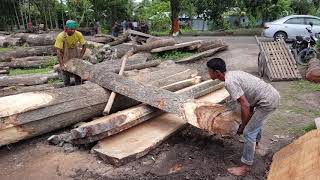 Tough To Control Huge Teak Pcs for Cutting At Saw Mill/Toughest Job for Wood Cutting