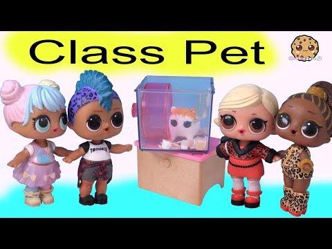 New Class Pet ! LOL Surprise Punk Boi + Playmobil Play Video by Cookie Swirl C - UCelMeixAOTs2OQAAi9wU8-g