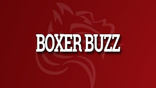 BoxerBuzz with Charli Elliot