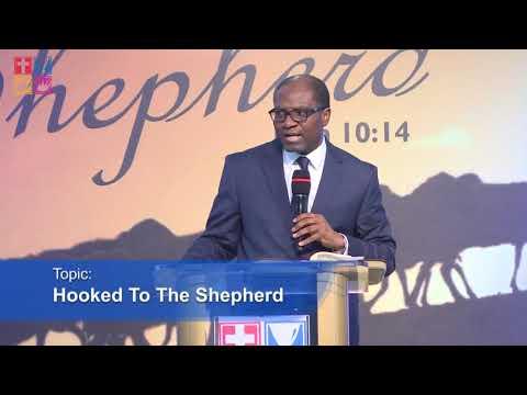 Hooked To The Shepherd