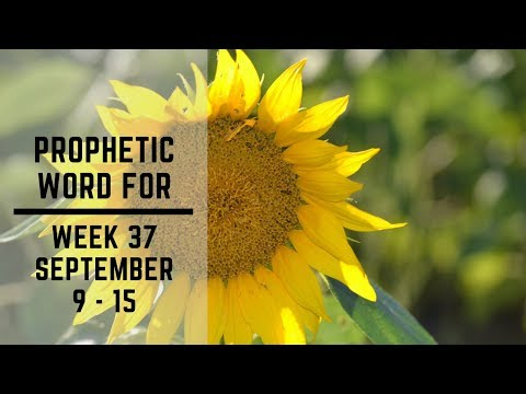 Prophecy For Week 9 September